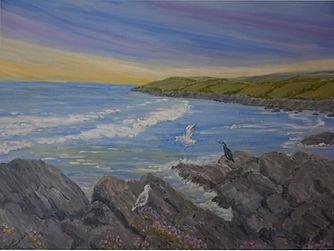Cornish Coast. seascape rocks birds