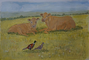 Sleepy Cows And Strolling Pheasants painting original art for sale