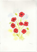 Poppy Card.jpg