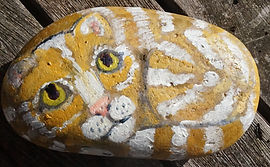 Charlie ON A Rock.painted stone