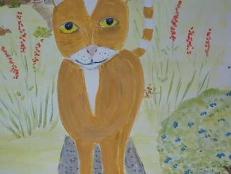 Charlie the Cat. My illustrated book for 0-9 year olds.