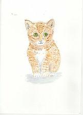 Kitten Card.jpg cute Kitten