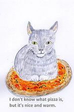 cat on pizza.jpg