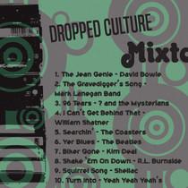 Dropped Culture Mixtape Vol.22