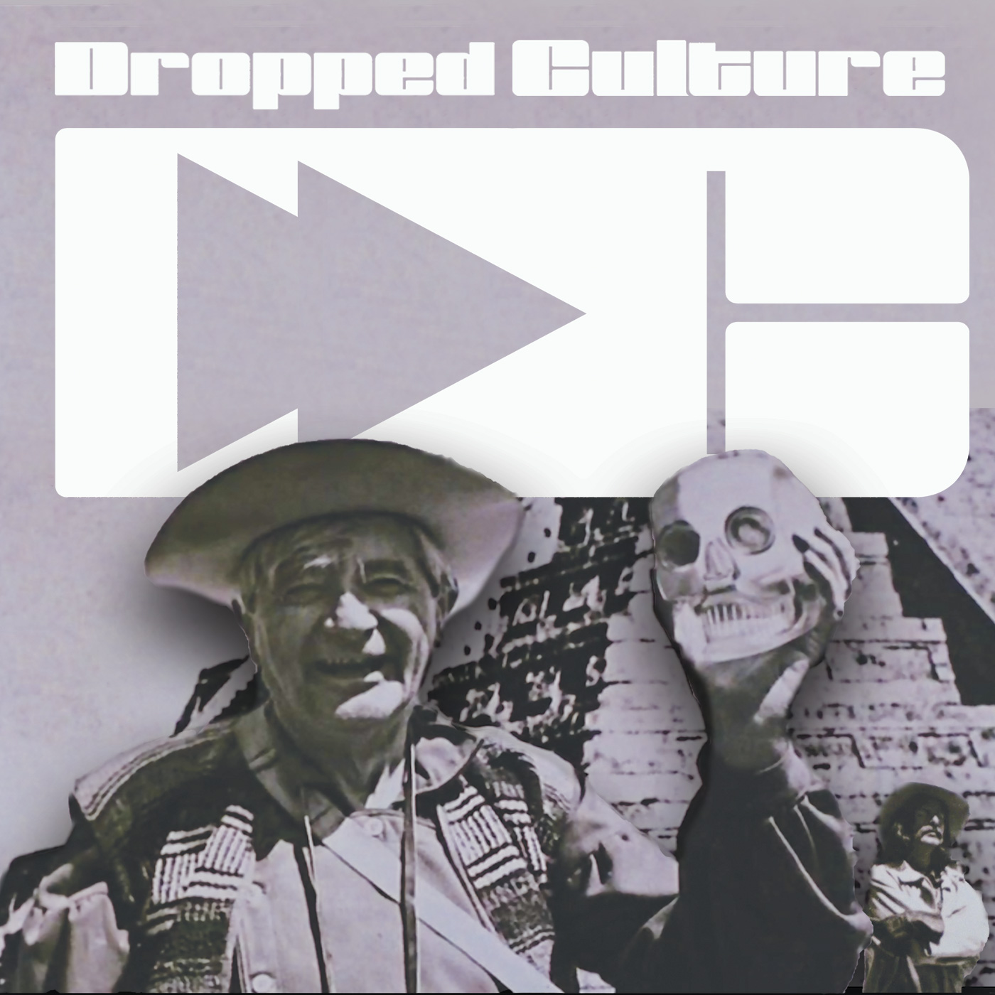 Dropped Culture House 2