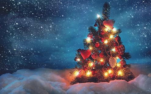 albero-natale-decorato.jpg