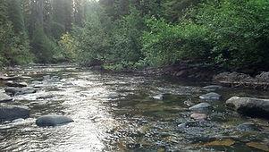 Montana river scene