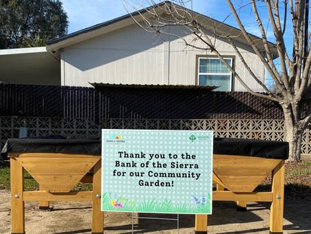 Mooney Grove has a new community garden!