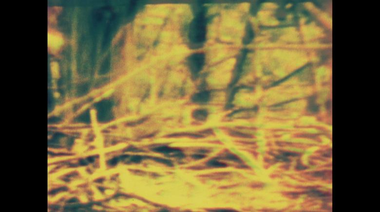 EMBLEM-3.png