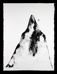Avalanche with black background.jpg