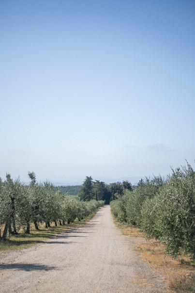 TuscanyRoadtrip00144.jpg