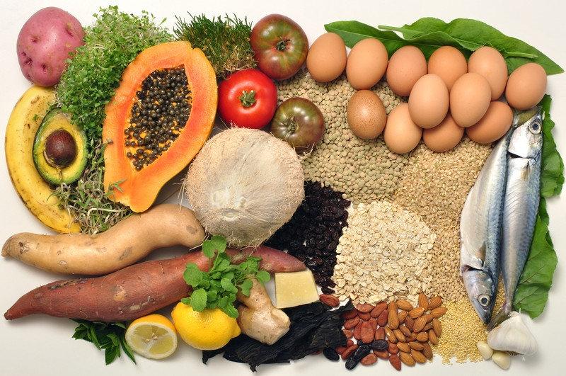 food allergy test IgG 24 foods