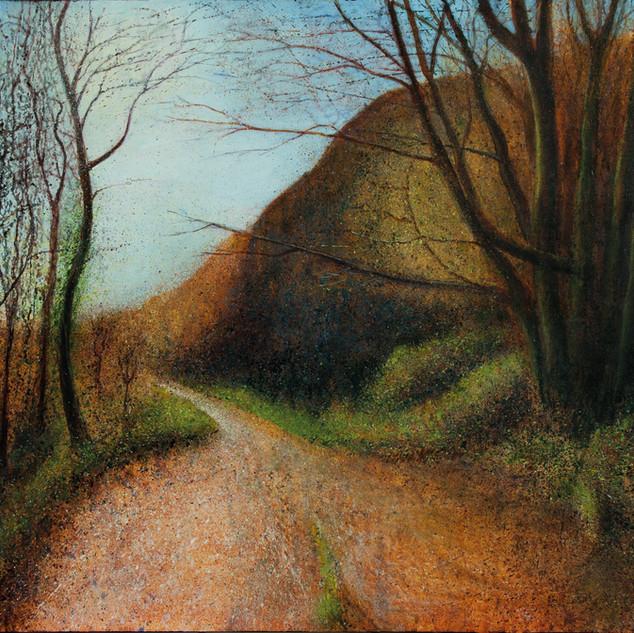 Hills Path Through Autumn Trees