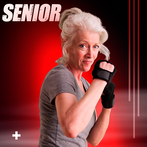 FITBOXING SENIOR .png