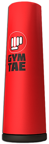 TAEBAG_GYMTAE FITBOXING.png