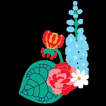 delphinium gloriosa carnation daisy clarinervium
