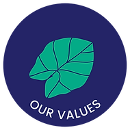 our values button under.png