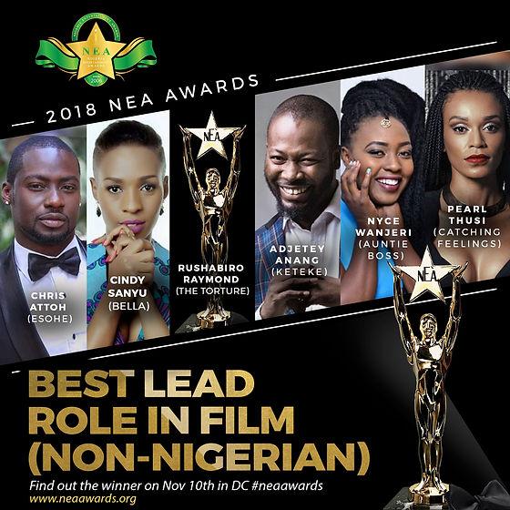 BEST-LEAD-ROLE-IN-FILM-NON-NIGERIAN.jpg