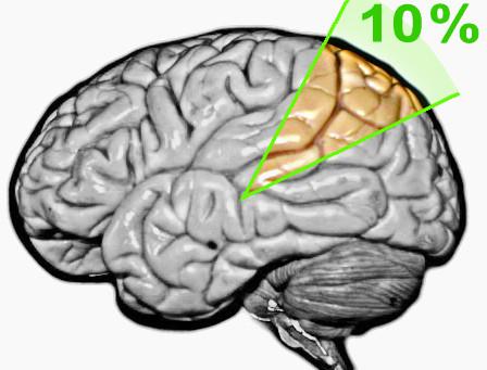 Investing Myths & Brain Myths Debunked: Behavioral Finance