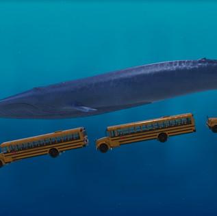 Giants of Land & Sea