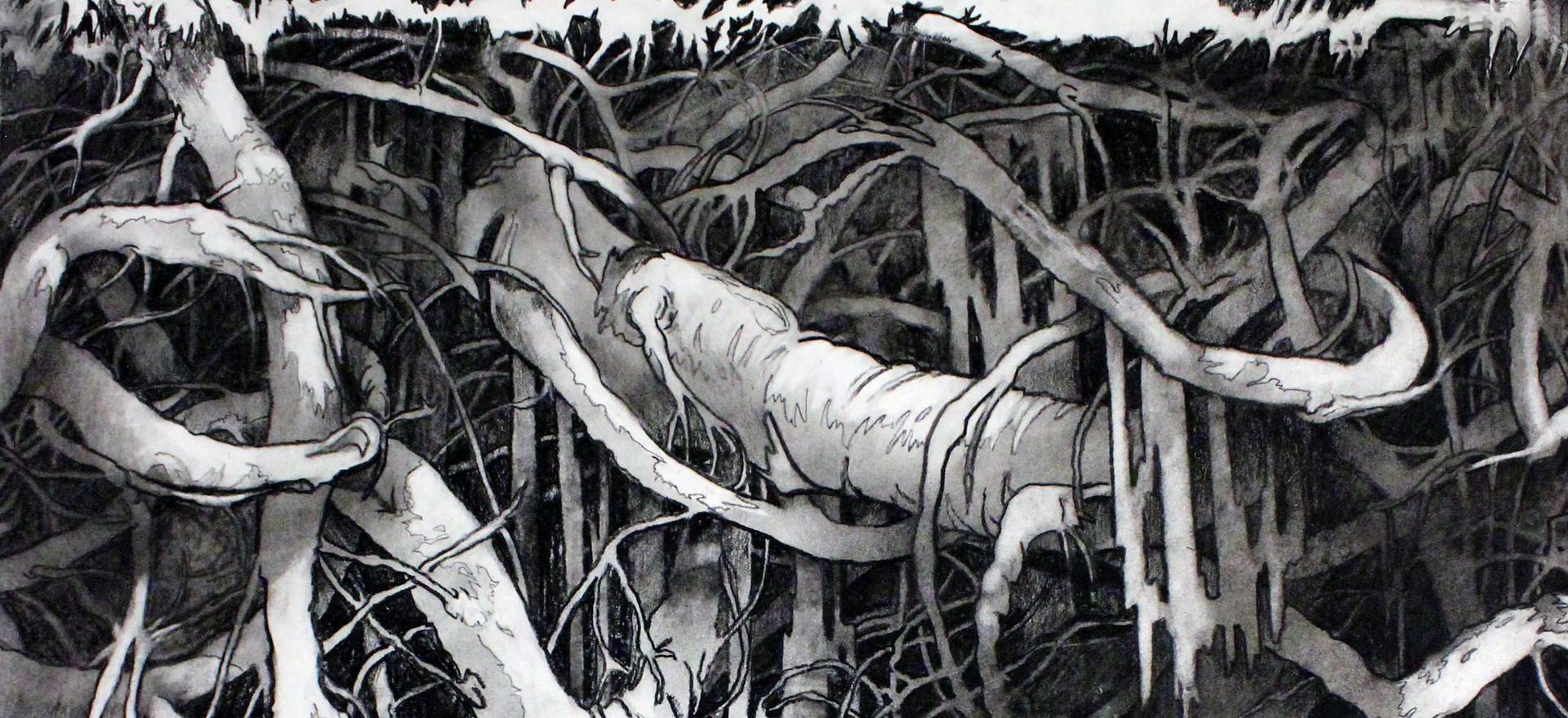 Roots 2, detail from A Walk In The Park