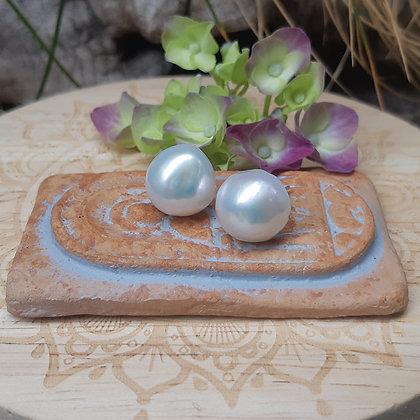 poet's cove - freshwater pearl earrings - post
