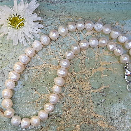 poet's cove - freshwater pearl necklace