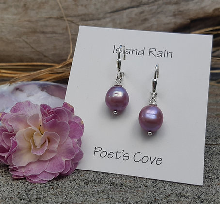 poet's cove - freshwater pearl earrings