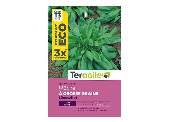 GRAINES MÂCHE À GROSSE GRAINE DOUCETTE ECO 12G TERAGILE®
