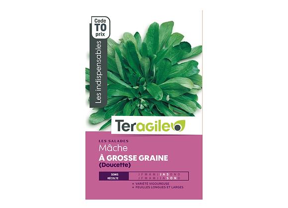 GRAINES MÂCHE À GROSSE GRAINE DOUCETTE 5G TERAGILE®