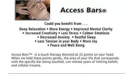 what can access bars do for you.jpg