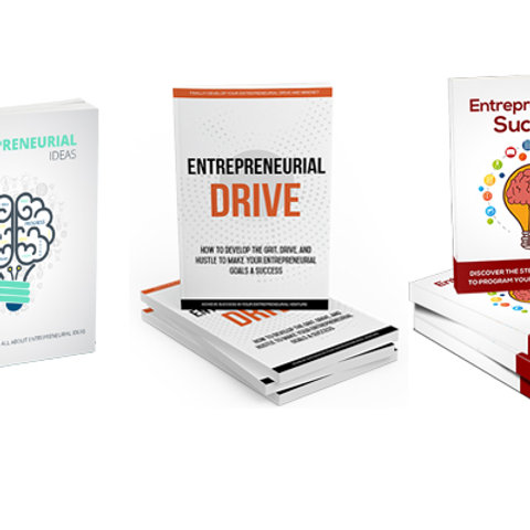Value 3 Pack - Entrepreneurial eBooks & Tools