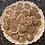 Thumbnail: Cinnamon Swirl Pie