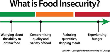 what-is-food-security.jpg