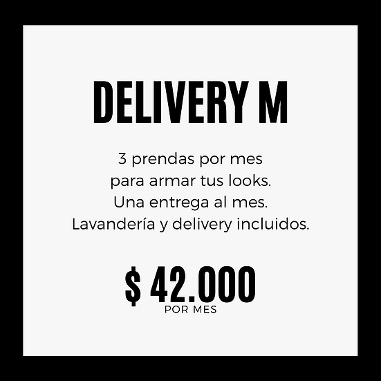 PLAN DELIVERY M