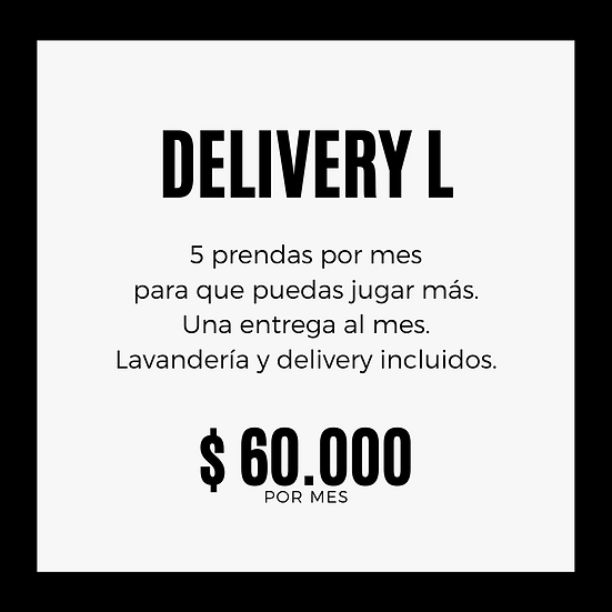 PLAN DELIVERY L