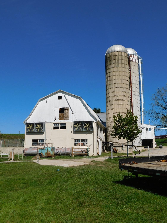 Pleasant Paradise Farm