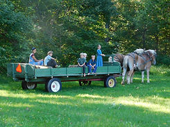 Amish farm wagon rides