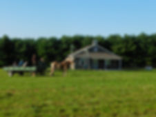 Horse rides past an Amish School House