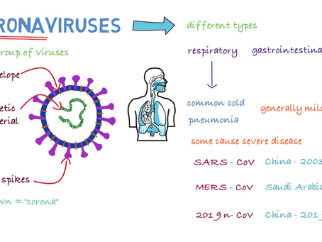 Are There Other Types of Human Coronavirus?