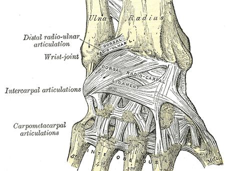 Carpometacarpal Osteoarthritis - New and Updated Summary
