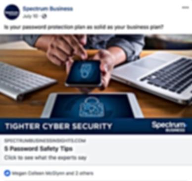 SpectrumBiz_Cybersecurity.png