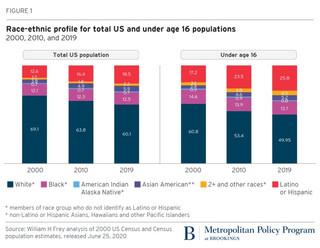 2020 Census Update:   Diversity Rising and Response Rates