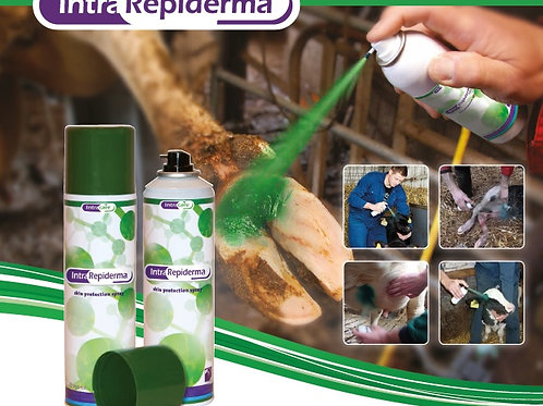 Repiderma Spray