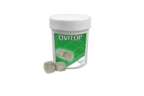 OviTop Bolus Sau og Geit