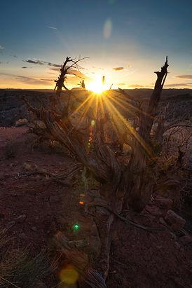Airzona Sunset - Fine Art - Landscape