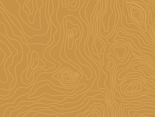TopographyColor4.jpg