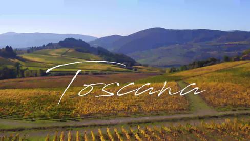 Aerial video of Vineyards