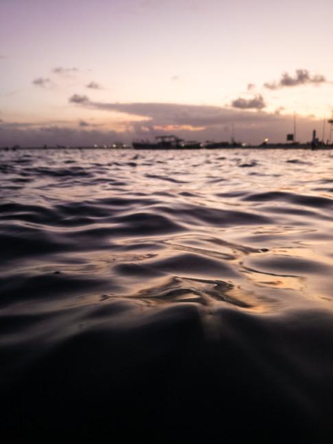 Sunset Swims