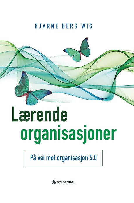 Lærende_Organisasjoner_bok.jpg